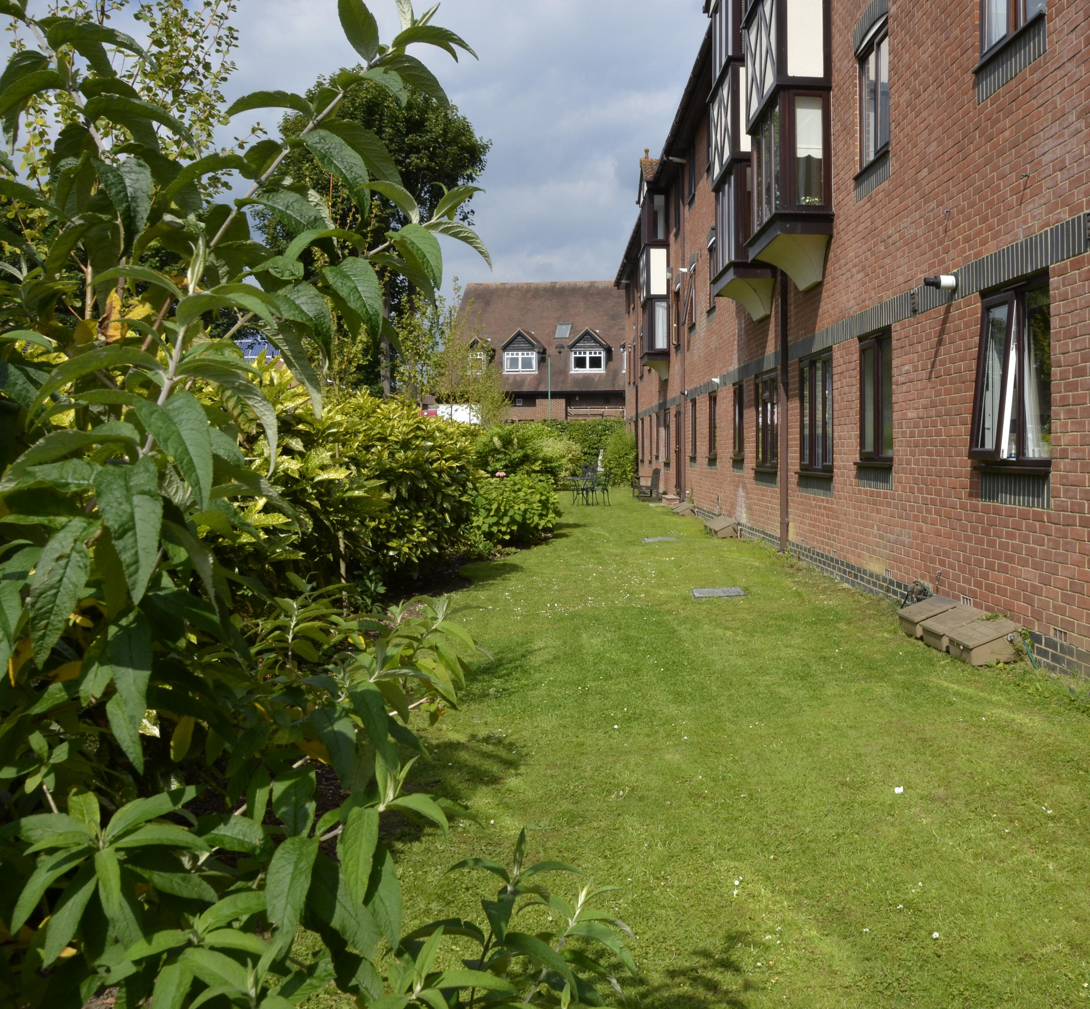 14 - Back garden (2)