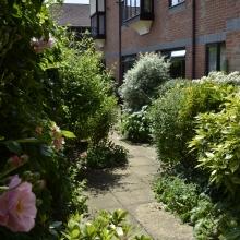 13- Side garden (2)